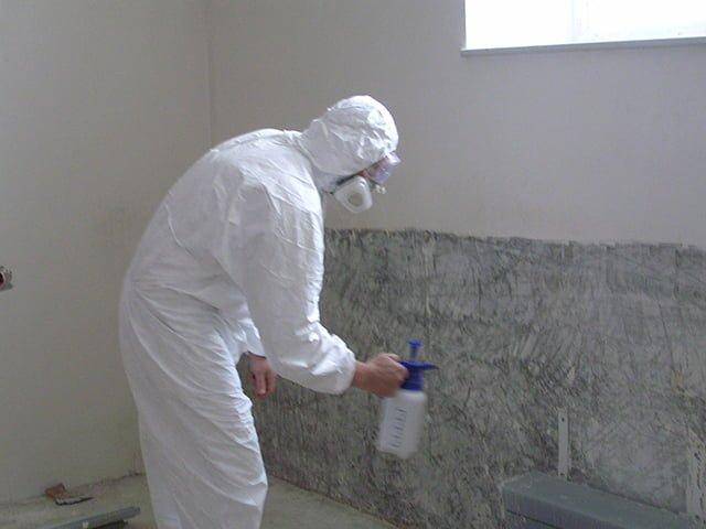обработка стен от грибка