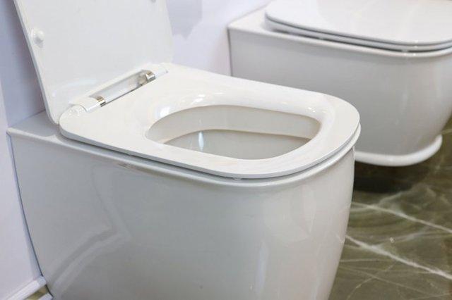 унитаз из санитарного фаянса