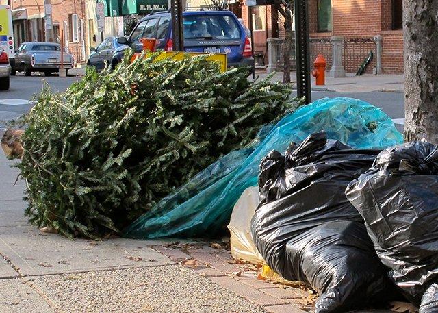 елка на помойке