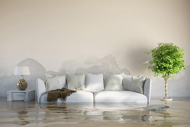 соседи сверху затопили