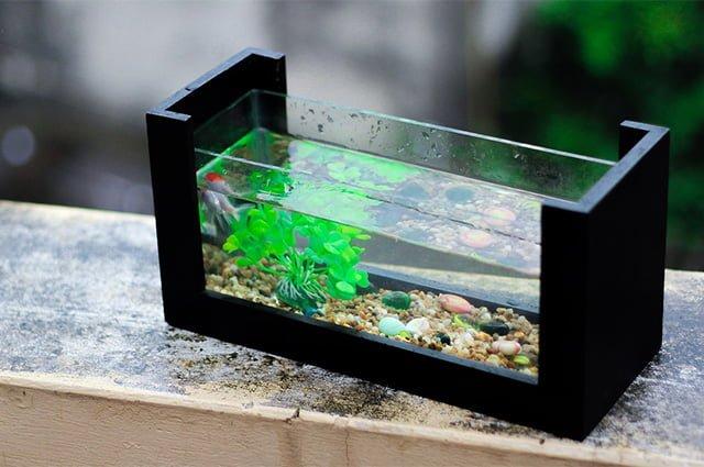 аквариум для увлажнения воздуха в квартире