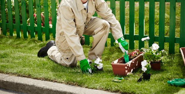 Как отстирать пятно от травы